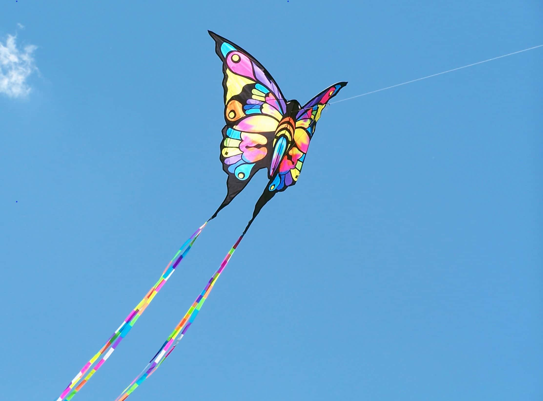 Kite String Lights : Kites for kids, let s fly a kite! Cool Outdoor Toys